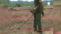 Croatie: 24 ans pour se débarrasser des mines antipersonnel