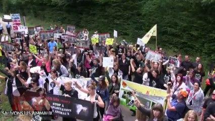 Manifestation anti vivisection devant l'élevage de chien de destiné aux labos (08.09.2013)
