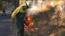 La Galice en lutte contre plusieurs incendies