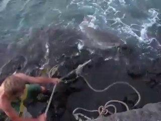 Pêche au requin Tigre avec une corde