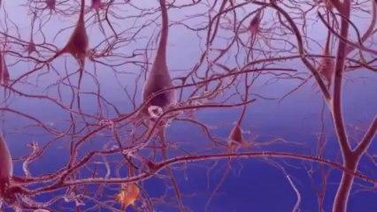 Unraveling Alzheimes Disease