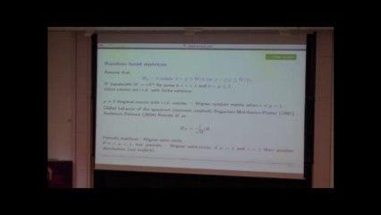 Quelques questions en matrices aléatoires_Sandrine Péché