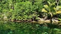 Riviera Maya  Cenotes, Ceviche & Ancient Spirits BBBTV