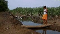 Nicaragua : sur la piste de l'épidémie