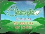 Chlorophylle épisode 53 sur Télé Doller