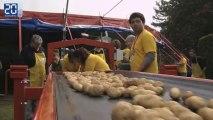 Record du monde du plus gros cornet de frites