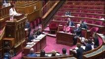 """Intervention de J. Le Menn, rapporteur sur """"Droit et protection des personnes faisant l'objet de soins psychiatriques"""""""