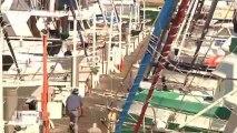 BMX Dock Jump | #Win and #Fail