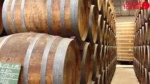 Visite de l'entreprise Calvados pere Magloire - Visite de l'entreprise Calvados pere Magloire