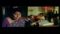 Snake Crawls Into Sanghavi's Nighty   Funny Scene