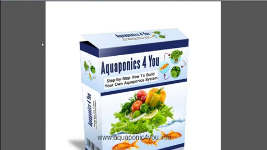 Aquaponics 4 You Review – How To Build An Aquaponic System