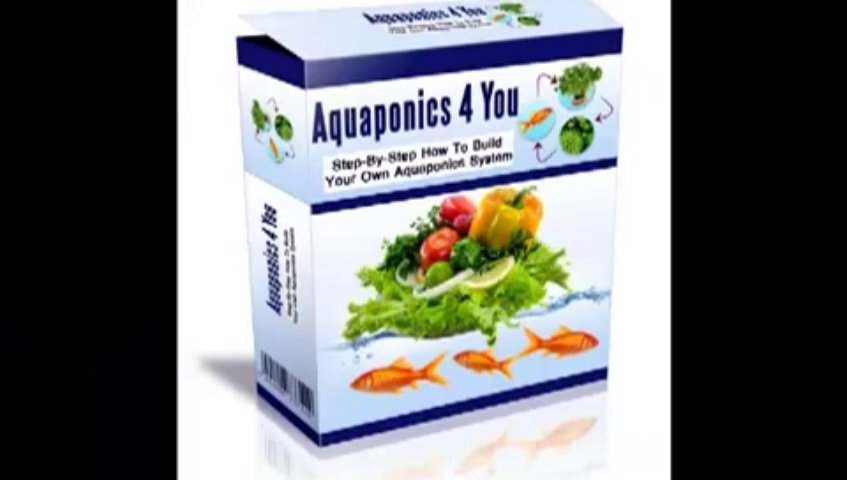 Aquaponics 4 You Review – Step by step How to Build Your Own Aquaponics System