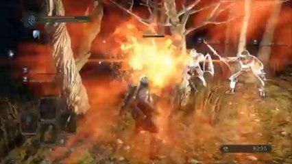 TEST Ver. PLAY MOVIE(1) de Dark Souls 2