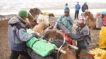 Exploration en Mongolie : Step02