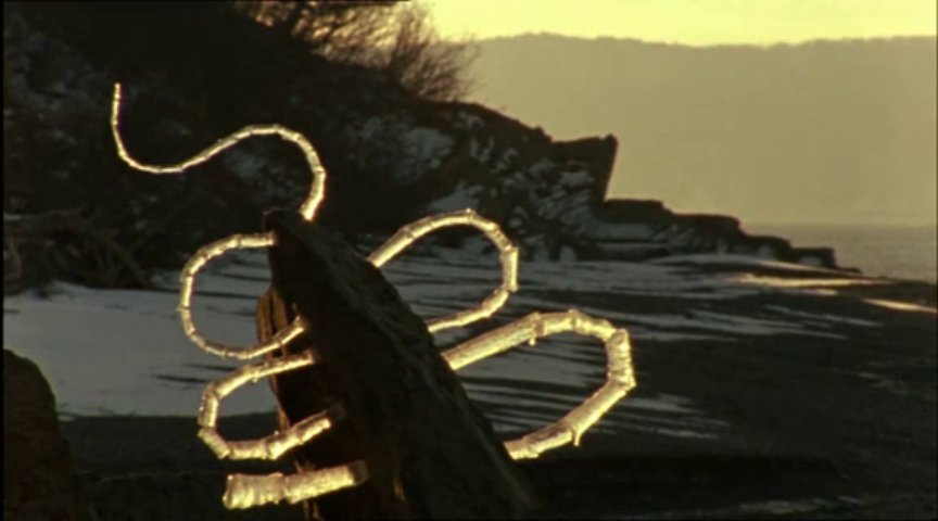 Andy Goldsworthy's Rivers and Tides