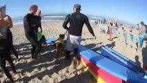 Perros con amor al mar se reunen en la quinta edición del Surf City Surf Dog