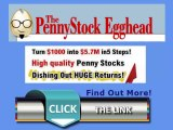 The Penny Stock Egghead - Penny Stocks to Invest In - How to Buy Penny Stocks