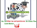 Quick Commissions Review - Download quick commissions 2013