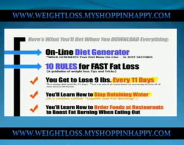 Watch Fat Loss 4 Idiots Diet Generator – Free Look – Diet Software Programs