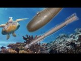 Bombs dropped on Australia Great Barrier Reef by US Marines