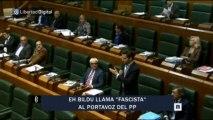 EH Bildu llama fascista a un parlamentario del PP ante la indiferencia de la presidenta