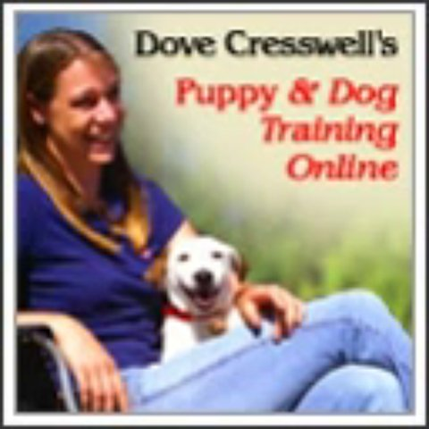 Dove Cresswells Dog Training Online Review + Bonus