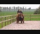 PORTE OUVERTE AU PRES SEC  (chevaux )
