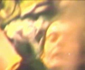 """""""UZESTE 83 OU SUPERHUIT SAUVAGE"""""""
