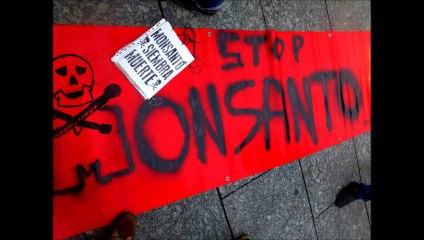 Marches contre Monsanto 12 octobre et 25 mai 2013