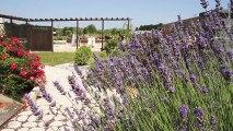 Art et décoration des Parcs et Jardins béton décoration à Grandjean
