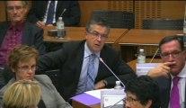 15 octobre 2013, Commission de développement durable : audition de M.Eric Delzant, délégué interministériel à l'aménagement du territoire : Bertrand Pancher alerte sur les dangers qui pèsent sur les Zones de Revitalisation Rurale
