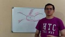 Reto wasanga Día 15- Habilidades para los negocios online