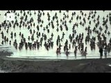 Spencer Tunick photographs thousands during Dead Sea sunrise