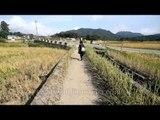 As she runs to the schoolbus stop: School day in Ziro
