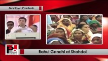 Rahul Gandhi in Shahdol (MP) strikes chord with Tribals; slams BJP government. Part 01