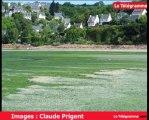 Saint-Michel-en-Grève (22). Retour fracassant des algues vertes