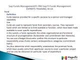 Sap Funds Management(FI-FM) Sap FI Funds Management EXPERTS TRAINING IN UK@magnifictraining.com