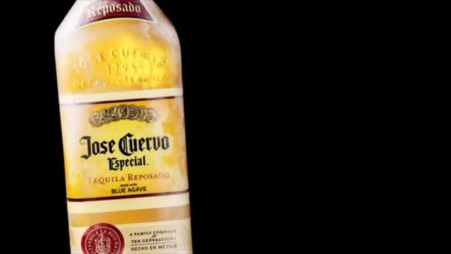 Tortoise in the doghouse -- Jose Cuervo #PARTYANIMALS
