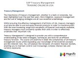 SAP Treasury and Risk Management  TRAINING ONLINE IN USA@magnifictraining.com