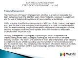 SAP Treasury and Risk Management  CERTIFICATION TRAINING  IN UAE@magnifictraining.com