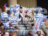 Watching Rugby Online Western Province vs Natal Sharks