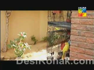 Kankar - Episode 20 - October 25, 2013 - Part 3