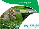 Keesen Crop Management : micro irrigation system, Agriculture, Irrigation
