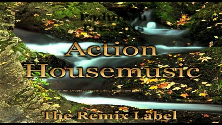 Action #Housemusic Paduraru Proghouse Music Megamix
