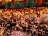 Environnement [Agriculture] BRF, bois raméal fragmenté le festin des sols - Sylvain Houlier Jacky Dupety - 22m35s