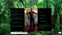 Qi Gong et hypnose gratuit :  vidéo 12, figures 21 et 22