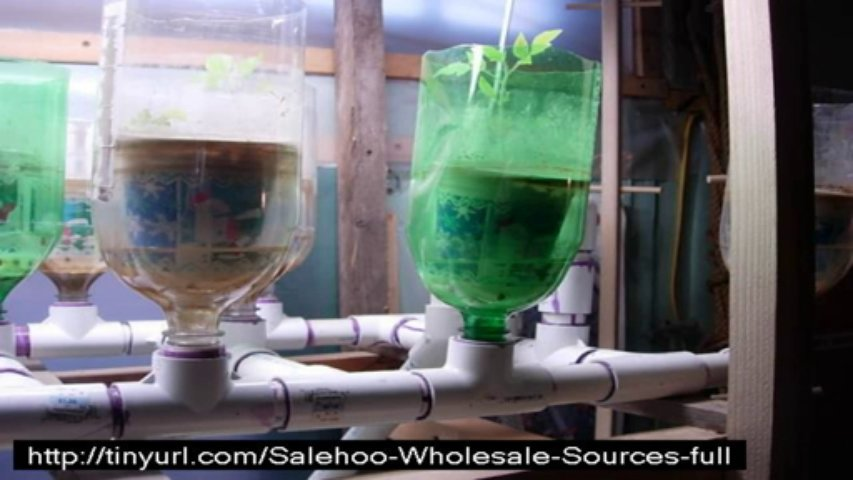 easy diy aquaponics free download