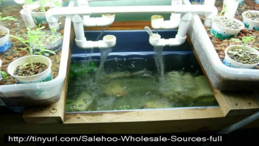 easy diy aquaponics review + bonus + discount