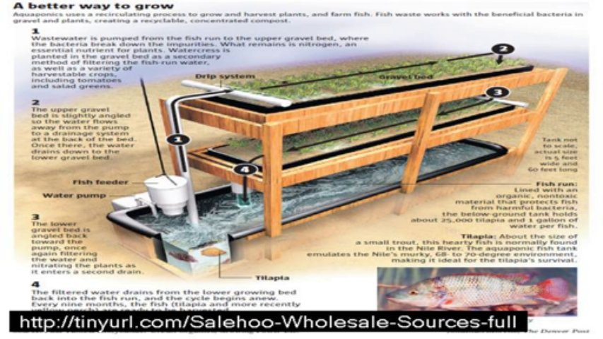 easy diy aquaponics review + bonus