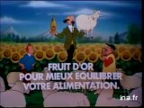Tintin Huile Fruit d'or Tournesol - 1983